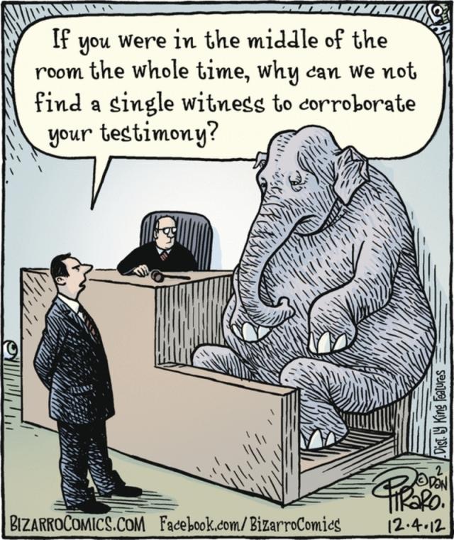 bizaro elephant